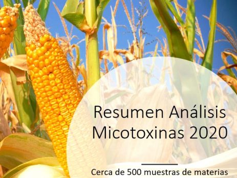 Informe Anual Micotoxinas 2020